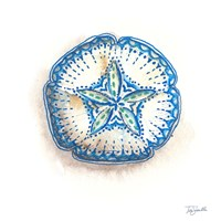 Bohemian Shells VI Fine Art Print