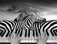 Piano Peace Fine Art Print