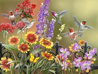 Hummingbirds - Fall Fine Art Print