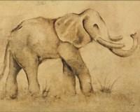 Global Elephant Light Crop Framed Print