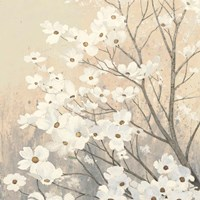 Dogwood Blossoms II Neutral Fine Art Print