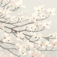 Dogwood Blossoms II Gray Fine Art Print