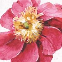 Pink Garden VI Fine Art Print