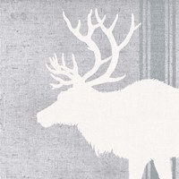 Woodland Animal II Fine Art Print