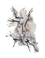 Komorebi Fine Art Print
