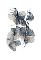 Amal Fine Art Print