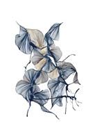Lissome Fine Art Print