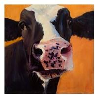 Freckles Fine Art Print