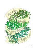 Parsley Sage Rosemary Thyme Fine Art Print