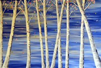 Winter Birch Fine Art Print