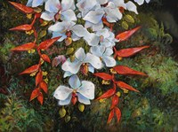 Passionate Cascade Fine Art Print