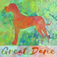 Great Dane Dog Fine Art Print