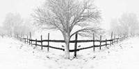 Snowy Landscape Fine Art Print
