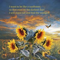 I Want to be a Sunflower Fine Art Print