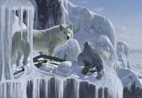 Ice Cascade Fine Art Print