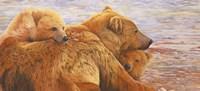 Alaska Coming 3 Fine Art Print