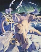 Arctic Mysteries Fine Art Print