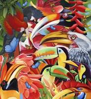 Jungle Colours Fine Art Print