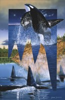 Orca Reflections Fine Art Print