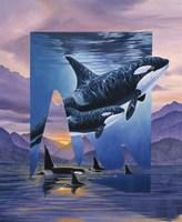 Orca Song Fine Art Print