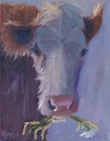Daisy Snack Fine Art Print