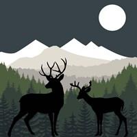 Deer Path Moon Fine Art Print