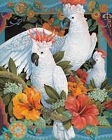 Tropical Trio Fine Art Print
