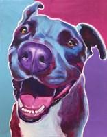 Pit Bull - Candy Fine Art Print