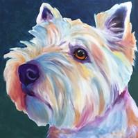 Westie - Chispy 3 Fine Art Print