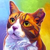 Cat - Ernie Fine Art Print