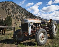 Ford Tractor Fine Art Print