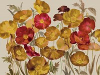 Yellow And Red Poppies Fine Art Print