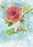 Spring Garden I Fine Art Print