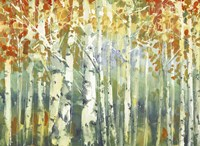 Abstract Birch Trees Warm Fine Art Print