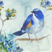 Bird On Branch 1 Fine Art Print