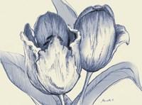 Indigo Tulip Fine Art Print