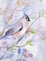 Pastel Birds 1 Fine Art Print