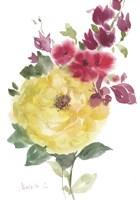 Roses Bogonvilia 2 Fine Art Print