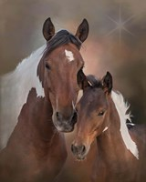 S'more & Chippewa - S Steens Mustangs Fine Art Print