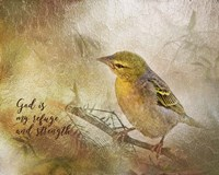 God is My Refuge Fine Art Print