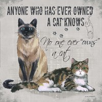 Owns a Cat Fine Art Print