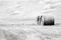 Hay Bales Fine Art Print