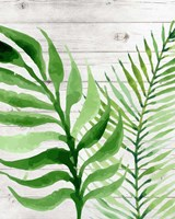 Banana Leaf II Fine Art Print