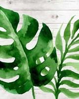 Banana Leaf III Fine Art Print