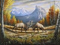 The Wild Frontier Fine Art Print