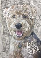 Lucky Dog Welsh Terrier Fine Art Print