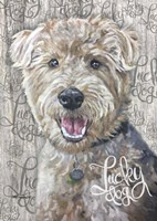 Lucky Dog Welsh Terrier Fine Art Print