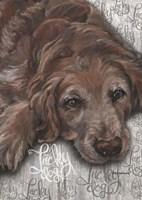 Lucky Dog Dark Golden Fine Art Print