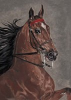 Bay Horse Fine Art Print