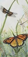 Botanical Beauties Fine Art Print